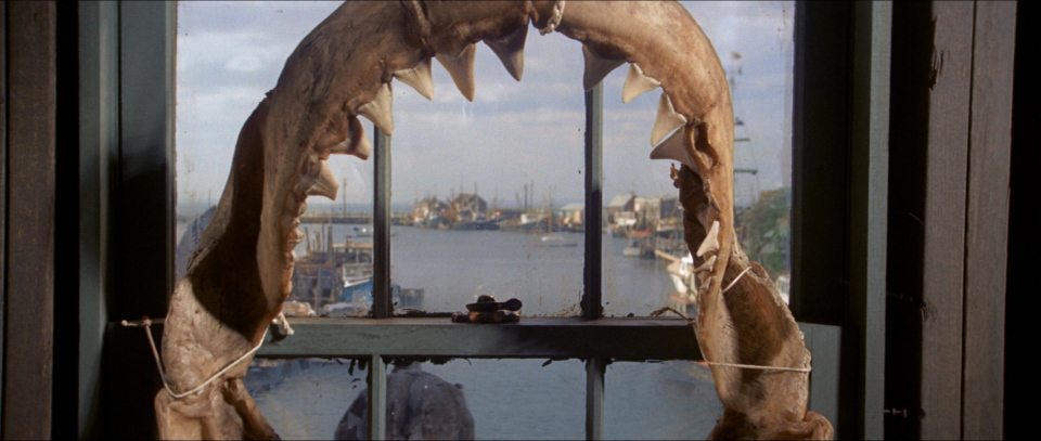 false alarms in jaws A giant great white shark arrives on the shores of a new england beach resort and wreaks havoc with bloody attacks on swimmers, until a part-time sheriff teams up with a marine biologist and an old seafarer to hunt the monster down.